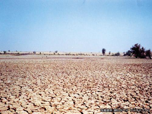 エコでいこう~地球温暖化を防止...