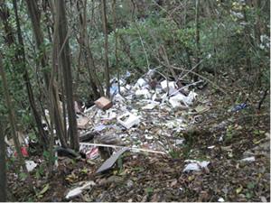 不法投棄ゴミの山積み